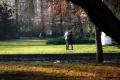 Sami u parku