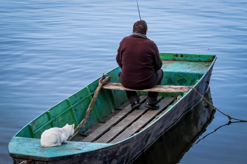 Čekajući ribu