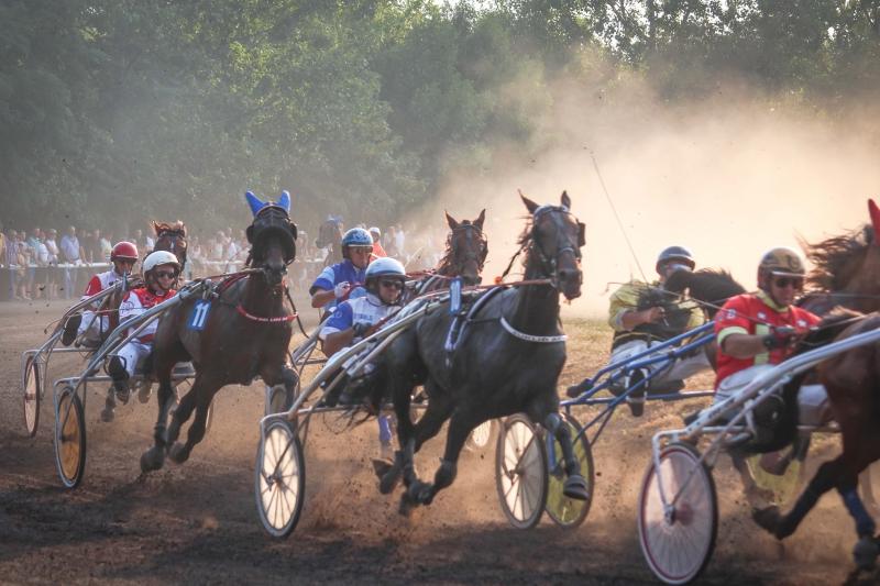 Horse racing - Srbobran 2017
