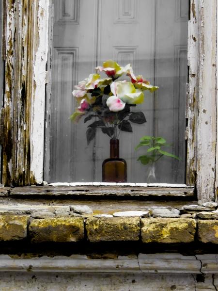 Kako nazvati plastično cveće? Silikonska lepota npr?