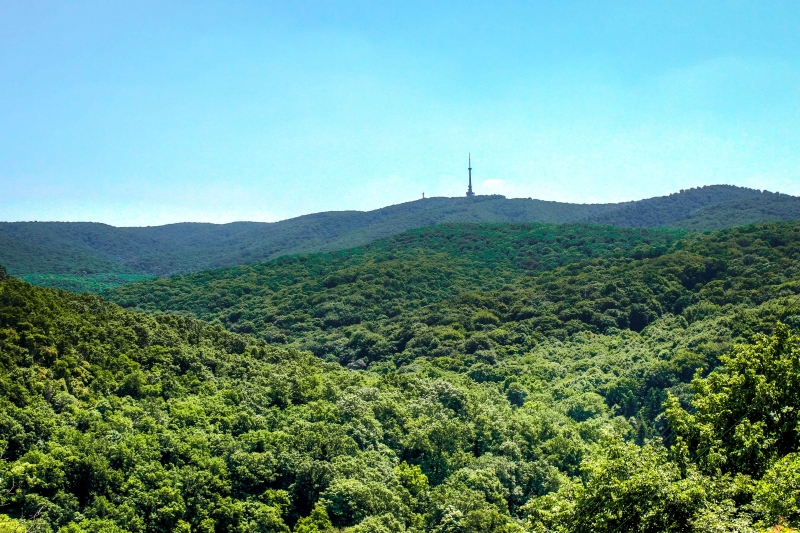 Fruška gora - zeleno Panonsko more